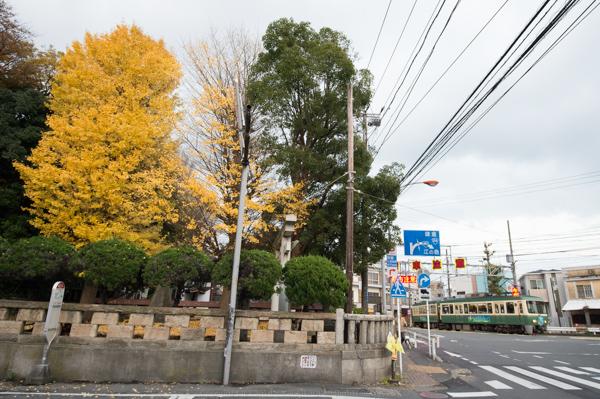 20141130-DSC_1276.jpg